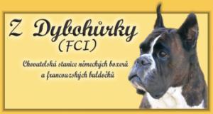 www.zdybohurky.cz